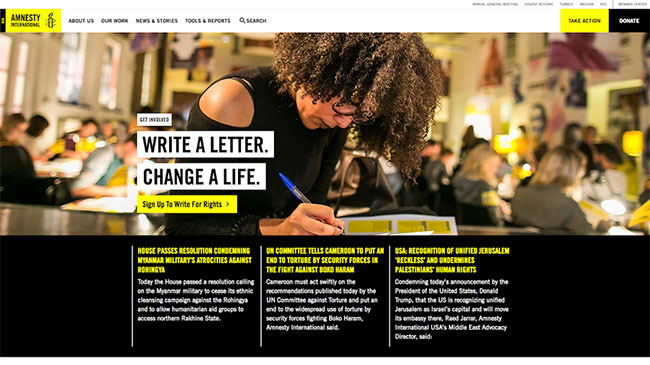 Screenshot of the Amnesty International USA website, made with WordPress