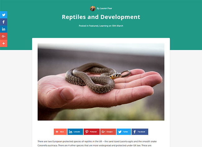 A blog article on the Arbtech site about reptiles and ecological surveys