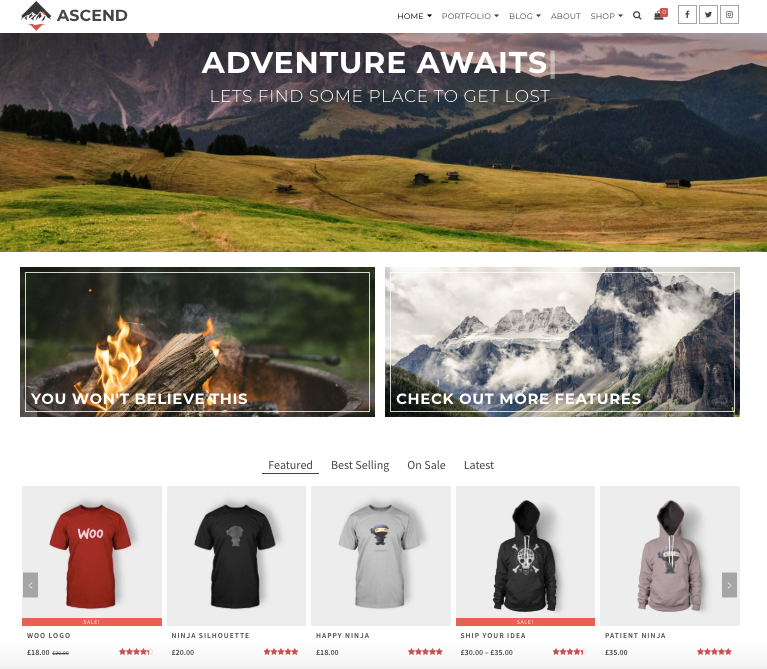 an example of  the ascend wordpress theme