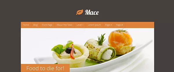 Screenshot of the Mace template