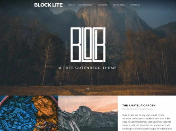 the wordpress block lite theme