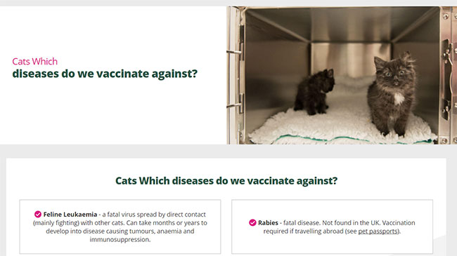 Screenshot of the Cat Vaccination page of the Bollington Veterinary Centre's website