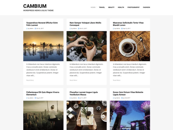 An example of the cambium wordpress theme