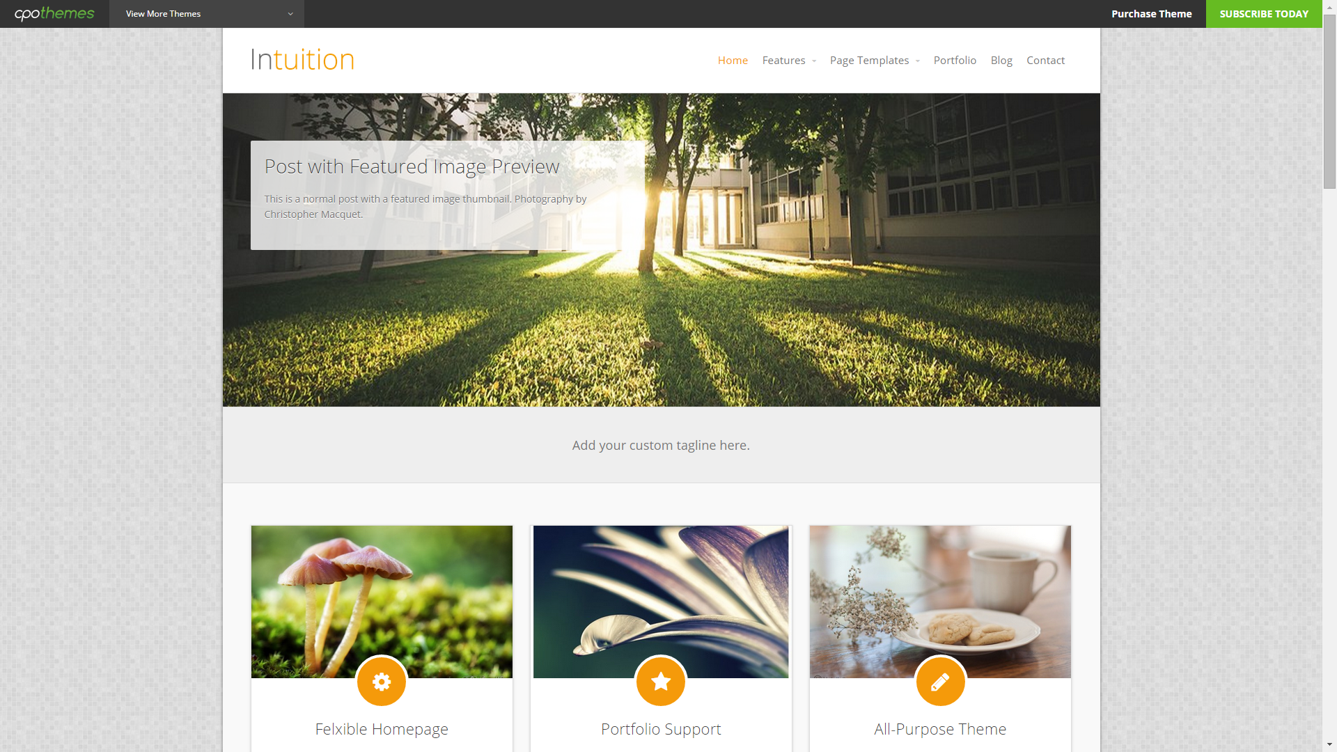 Screenshot of Intuition e-commerce template for WordPress