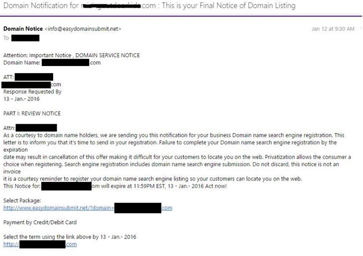 A spam email sent to someone about their domain name