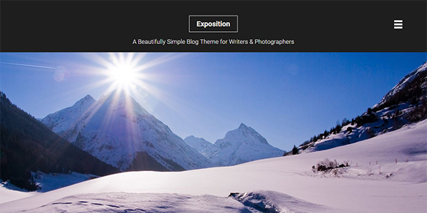 Screenshot of the Exposition Lite WordPress theme
