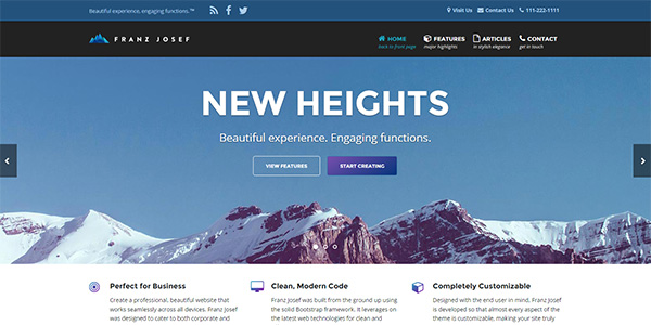 Screenshot of the Franz Josef WordPress theme