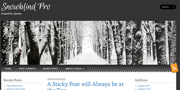 Screenshot of the Snowblind Pro WordPress theme