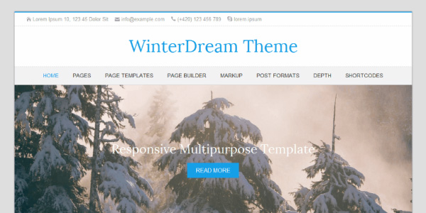 Screenshot of the WinterDream WordPress theme