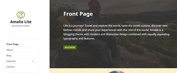 Screenshot of the Amalie Lite WordPress theme