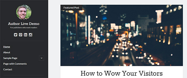 Screenshot of the Author WordPress theme