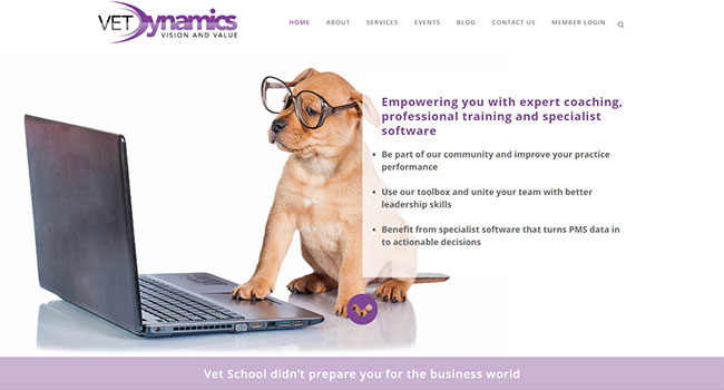 Screenshot of the Vet Dynamics home page
