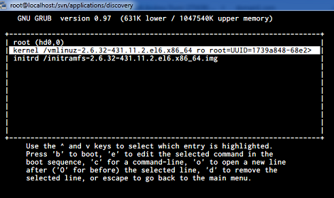 Screenshot showing the kernel boot parameters for your operating system